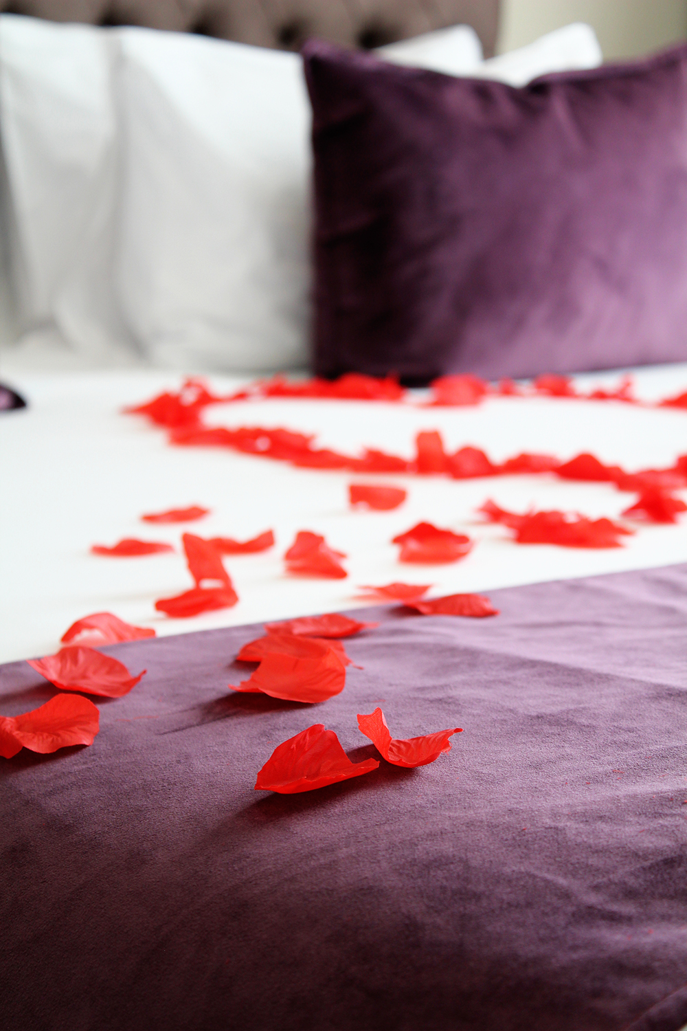 Romantic experiences, scrumptious menus and sweet cuddles for a very special and luxurious Valentine's Day 2020!